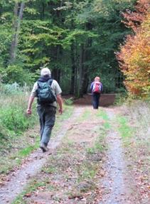NCA20-2 - Natur-Coach-Ausbildung2      14.-16.09.+ 05.-07.10.+ 26.-29.10.2020